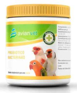 probioticos-en-la-alimentacion-de-aves-avianvet