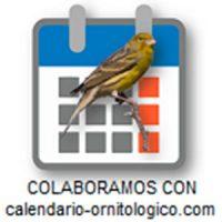 calenadario-ornitologico.com