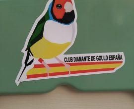 Pegatinas Club Diamante de Gould España